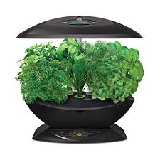 Indoor Herb Garden Kit Australia - amazon com aerogarden 7 with gourmet herb seed kit plant