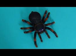 tarantula real like spider tarantula unboxing radio controlled
