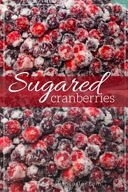 thanksgiving and christmas sugared cranberries a crowd pleasing thanksgiving and christmas