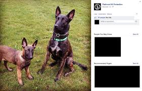 belgian shepherd killed 2014 dog bite fatality 7 year old boy killed by trained