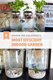 hydroponics saves 90 95 more water than soil gardening i grow