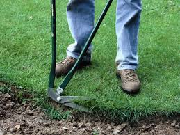 Types Of Gardening Tools - types of lawn tools garden pinterest lawn lawn care