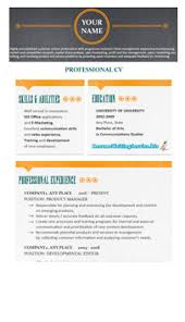 The Best Resume Writing Service by Choose The Best Resume Format 2014 Here Resume Writing Service