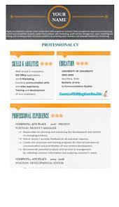 professional resume format 2015 resume writing service