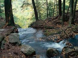 New Jersey rivers images Buttermilk falls delaware water gap national recreation area new jpg
