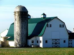 Barn Roof by 158 Best Dairy Farms Images On Pinterest Country Life Country