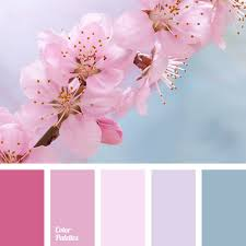 pink combination contrasting combination of pink and magenta color palette ideas