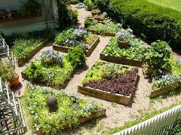 Small Garden Bed Design Ideas Plants For Small Garden Beds Fearless Gardener