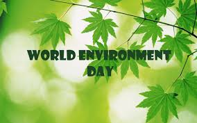 environment day wallpapers free download