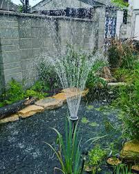 native pond plants uk trouble shooting guide pond leak or water evaporation