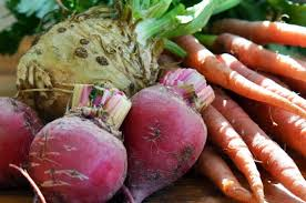 Fall Root Vegetables - your autumn vegetable inspiration file 40 recipes for fall kitchn