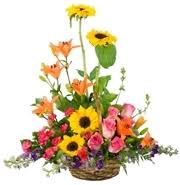 Flower Shops In Greensboro Nc - all occasions flower delivery raleigh nc starting at just 42 99