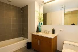 Wayfair Bathroom Mirrors - bathroom cabinets large framed mirror for bathroom mirrors