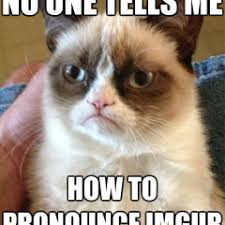 Meme How To Pronounce - funny meme archives page 456 of 982 cat planet cat planet