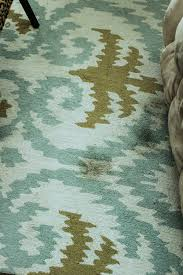 How To Clean The Rug Area Rug Cleaning Safe And Natural Rug Cleaning Ideas