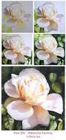how to paint a rose watercolor rose demonstrations step by step