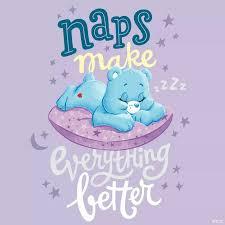 feel better bears best 25 teddy day care ideas on maltese shih tzu