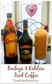 giant alcoholic drink best 25 baileys drinks ideas on pinterest baileys baileys