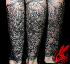 birds forest nature pine tree leg by jackie rabbit a