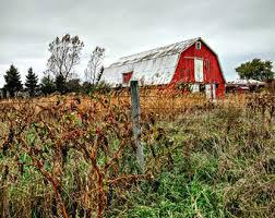 grass sky barn farm etsy