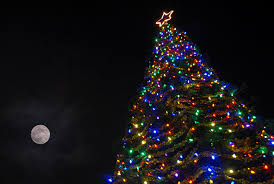 annual hospice of san joaquin tree of lights lighting ceremony