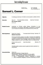Sample Resume Profile Statement by 40 Sample Resume Profile Statements Help Desk Resume