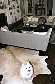 Cowhide Rug In Living Room Got Cowhide Winter Monroe