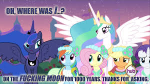 Mlp Funny Meme - after the invasion my little pony friendship is magic know your