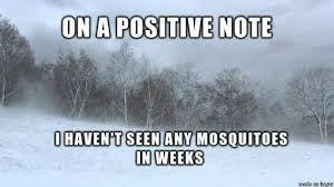 Cold Weather Meme - all this cold weather meme collection pinterest cold