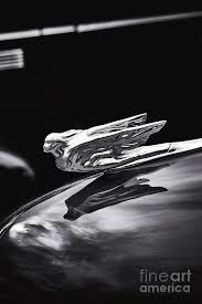 1941 cadillac ornament photograph by tim gainey