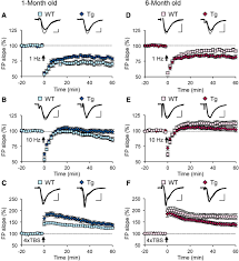 defective age dependent metaplasticity in a mouse model of