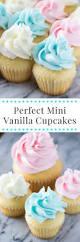 mini vanilla cupcakes just so tasty