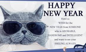 happy new year messages sms new year jokes