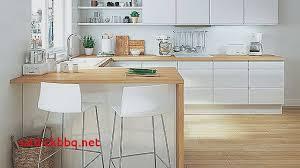 peindre carrelage plan de travail cuisine peindre carrelage cuisine plan de travail pour idees de deco de
