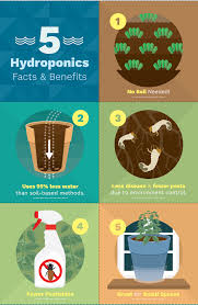 growing food with hydroponic gardening fix com