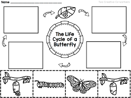 the life cycle of a butterfly printable mini book worksheets