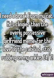 Possessive Girlfriend Meme - need a break from my cat he s clingier than the overly possessive