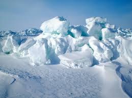 Photos Of Snow A Sense Of Snow Mapping Suitable Habitat For Polar Bear Dens