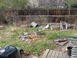 last year u0027s garden project an overabundance of curiosity