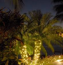 palm tree solar lights outdoor solar lights for palm trees outdoor designs