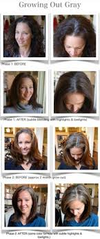 how to bring out gray in hair another great way to transition into grey large blocks on grey to