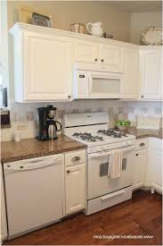 best of painted kitchen cabinets with white appliances