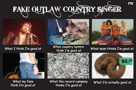 Country Meme - farce the music what i really do meme goes country