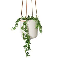 white hanging planter hanging planter small in white powder coated metal by lightly