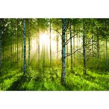 Mystical Forest Mural Nature Mural Download Wallpaper Murals Forest Gallery