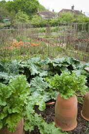 155 best g a r d e n potagers images on pinterest veggie gardens
