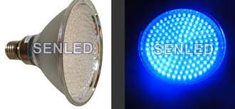 led light design top 10 blue led light bulbs blue cfl light bulbs