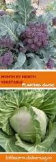 Vegetable Garden Planting Calendar by Garden Vegetable Planting Descargas Mundiales Com