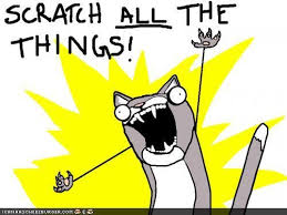 Clean All The Things Meme - scratch all the things random fun pinterest cat funny