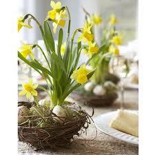 easter flower arrangements flowers arrangements for easter happy easter 2018